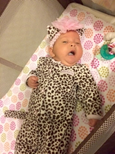 She's got the eye of the tiger... ROAR!! Katie Perry Doesn't have anything on this baby leopard's cuteness!